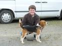 Les Beagle de l'affixe du Rallye de Beauport