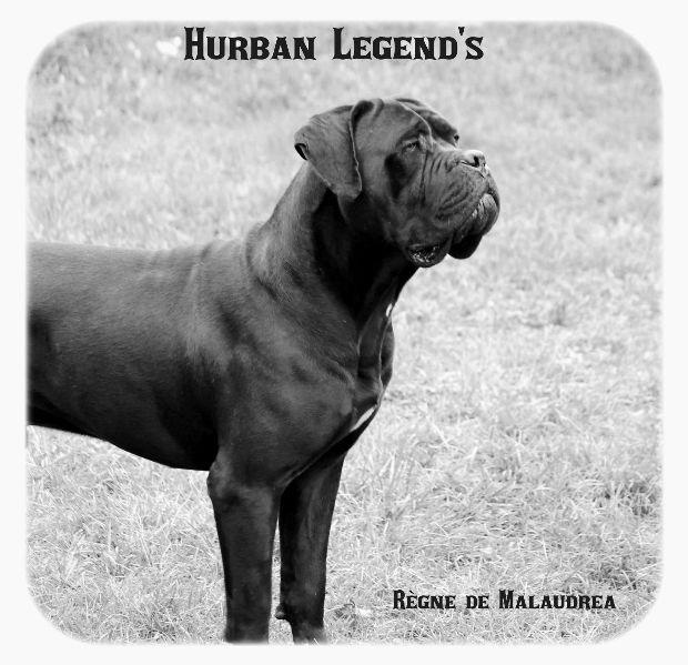 Hurban legend's du clos d'Attila