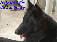 Ioda Du clos du faubourg