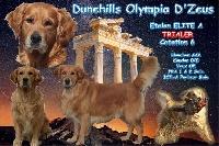 TR. dunehills Olympia d'zeus
