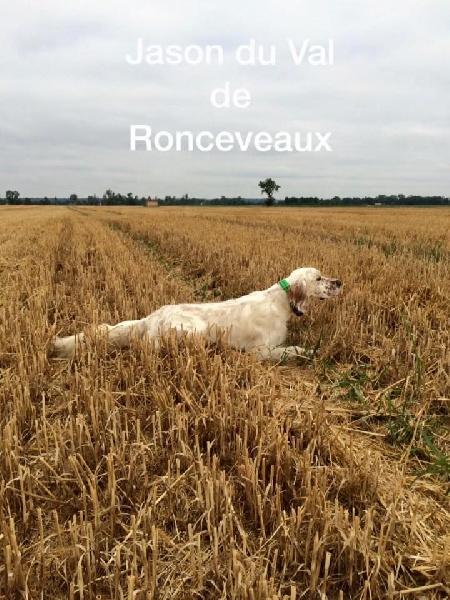 TR. Jason Du Val De Ronceveaux