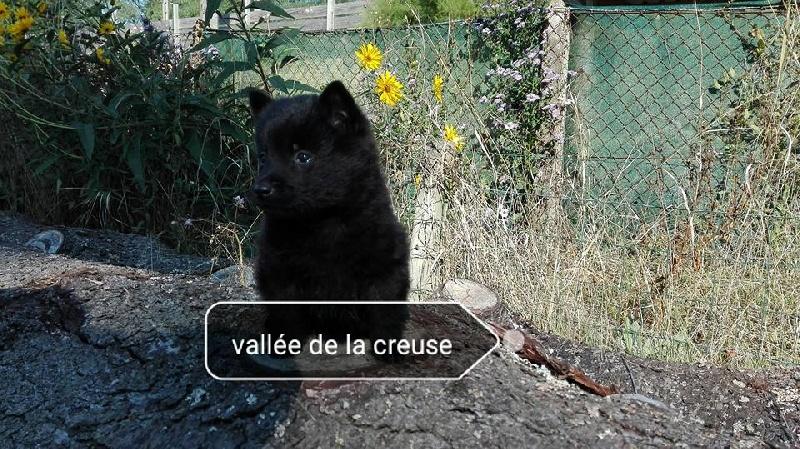 Moon de la vallée de la Creuse