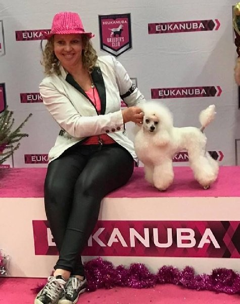 CH. Multi. champion lyla beautiful white girl Du tannenpark