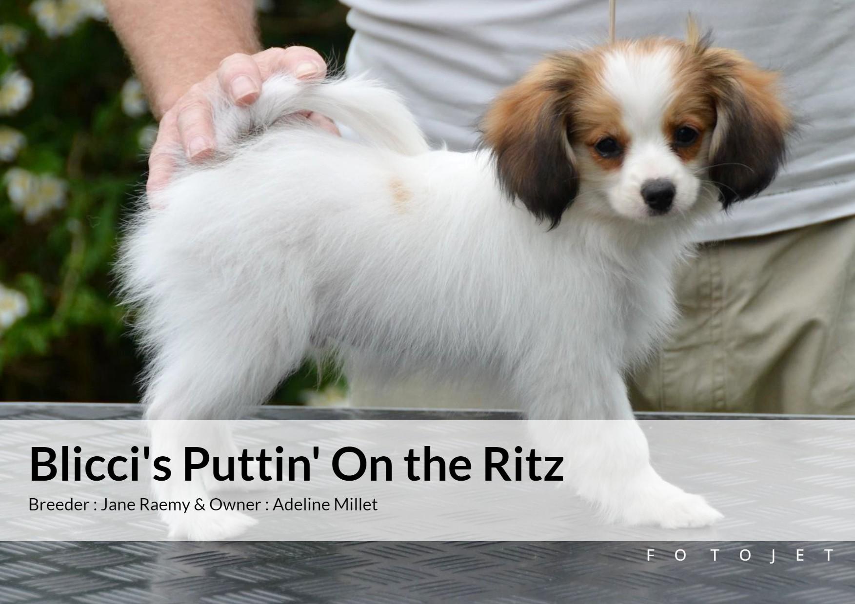 blicci's Puttin' on the ritz