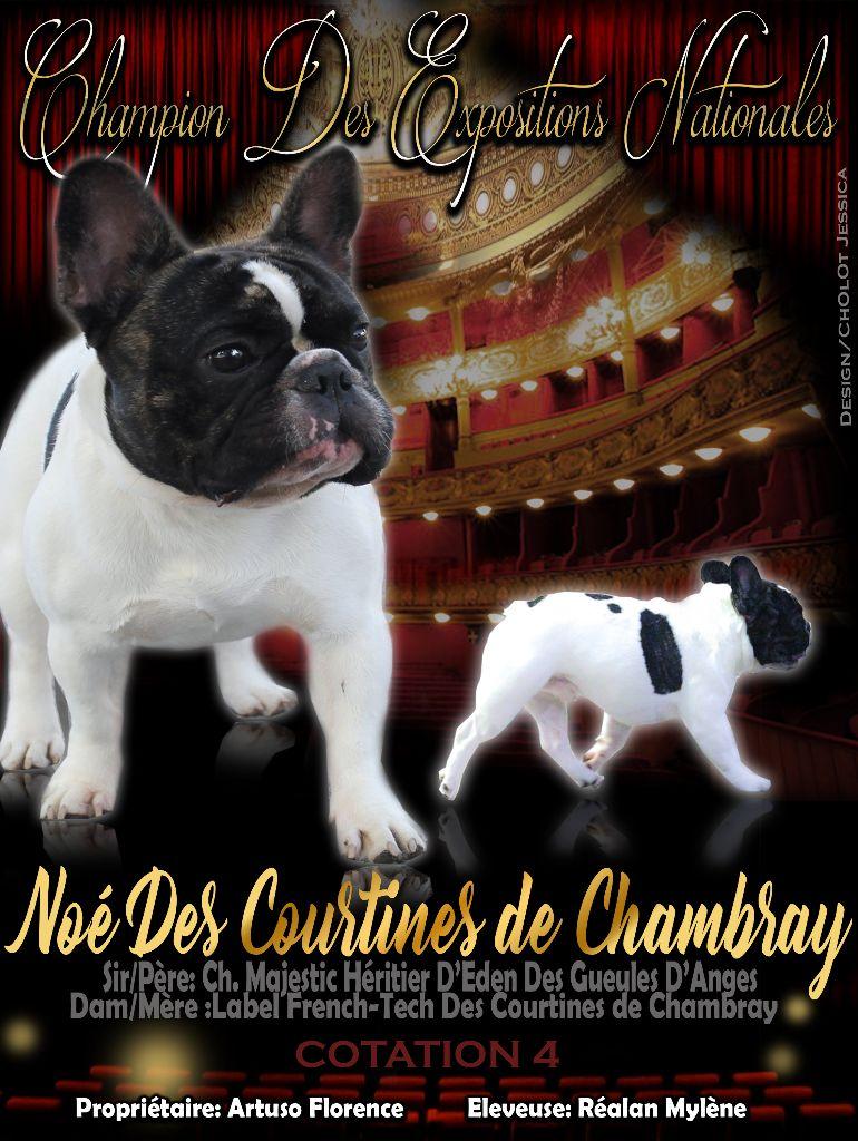 CH. Noé Des Courtines De Chambray