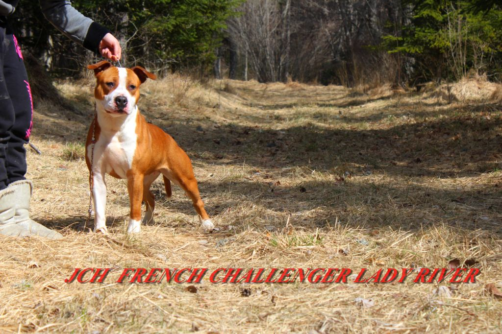 French Challenger Lady river