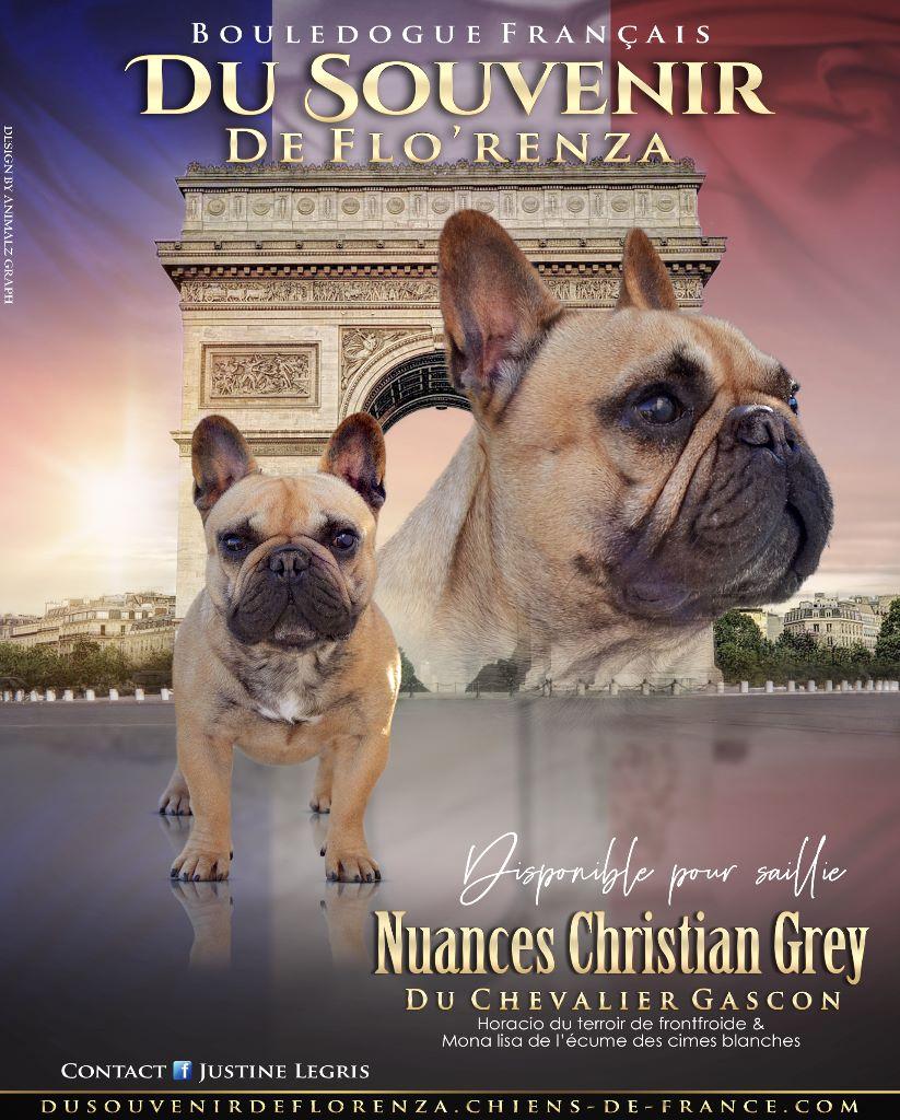 Nuances christian grey du Chevalier Gascon