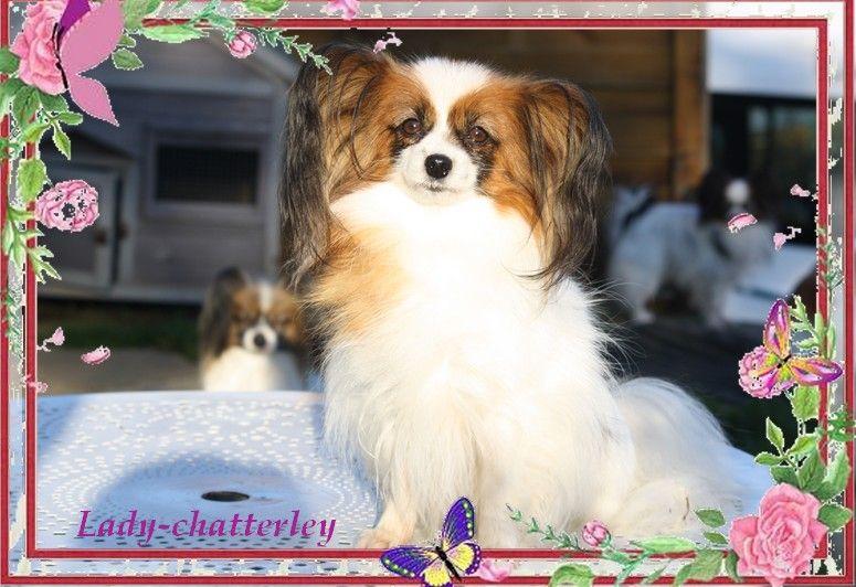 Lady-chatterley du Pre Mely de Laureden