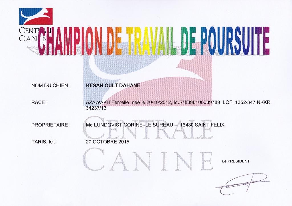 de garde-epée - Le diplôme de CHAMPIONNE de FRANCE de POURSUITE de KESAN est là !
