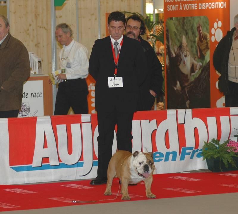 Photo elevage de la queue du grill eleveur de chiens for Salon du chiot lyon