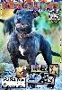 - Sortie du Magazine Spécialisé Staffordshire Bull Terrier JANVIER 2012