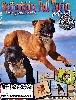 - Sortie 1er Magazine spécialisé Staffordhsire Bull Terrier - N°6
