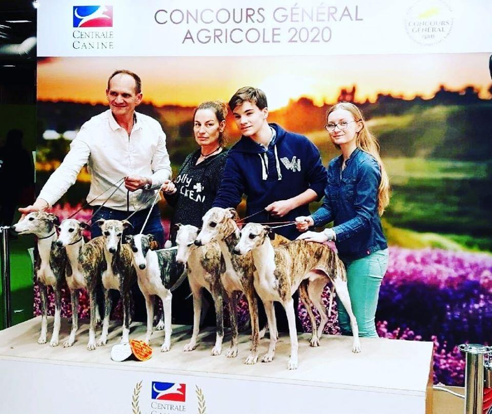 of Cyly of Course - Salon de l'Agriculture !!!!!!!!!!! médaille d'or et médaille d'argent