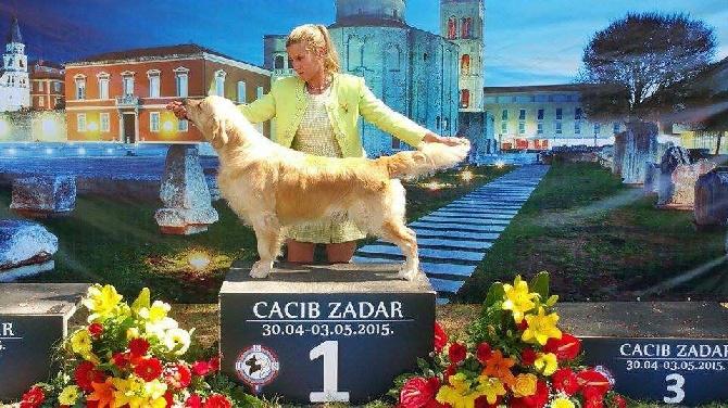 Masters of Water - Robin devient Champion de Croatie