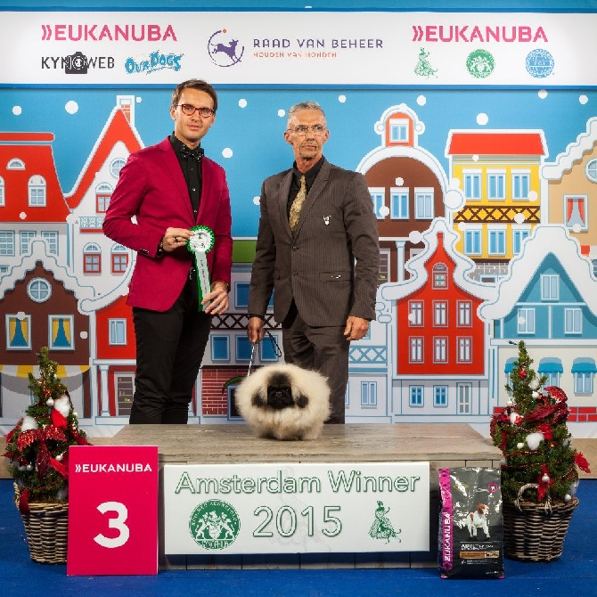 Vannjty - INTERNATIONALE AMSTERDAM WINNER SHOW 2015
