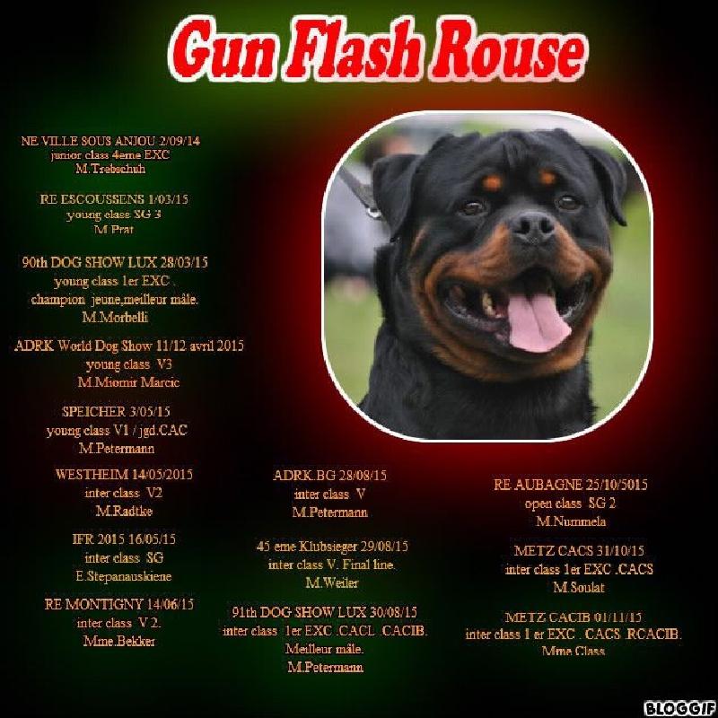Gun flash rouse