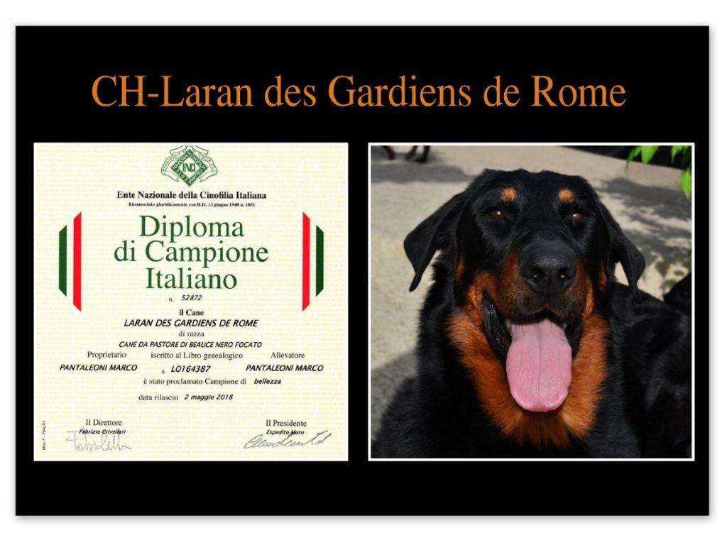 Des Gardiens De Rome - LARAN DES GARDIENS DE ROME - CHAMPION D'ITALIE