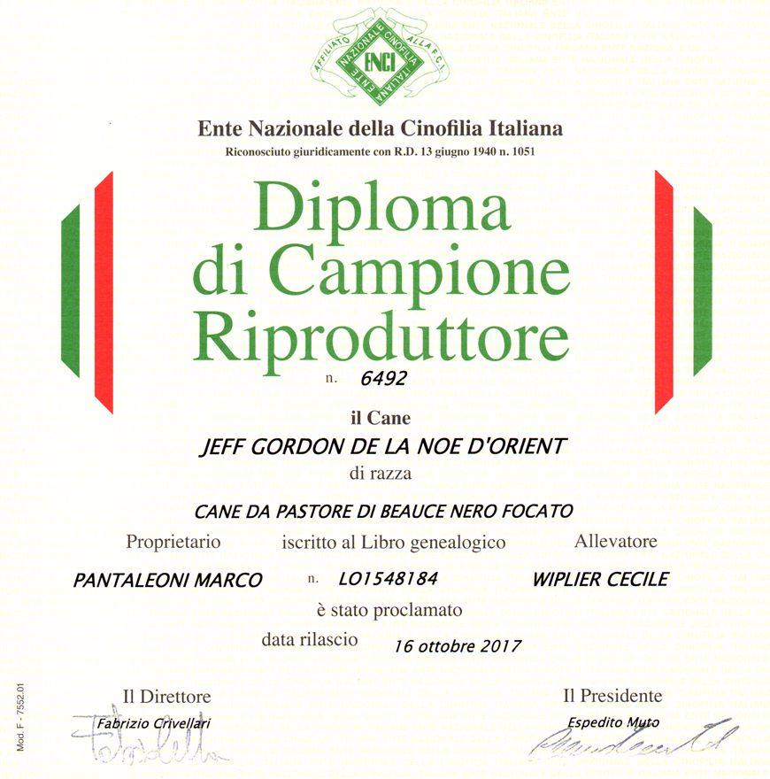 Publication : Des Gardiens De Rome  Auteur : Marco Pantaleoni