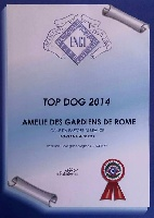 CH. Amelie Des Gardiens De Rome