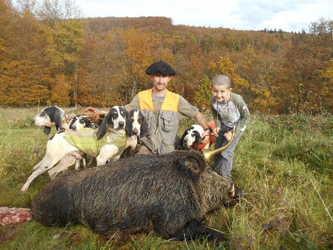 Elevage Du Coteau De La Versenne - eleveur de chiens