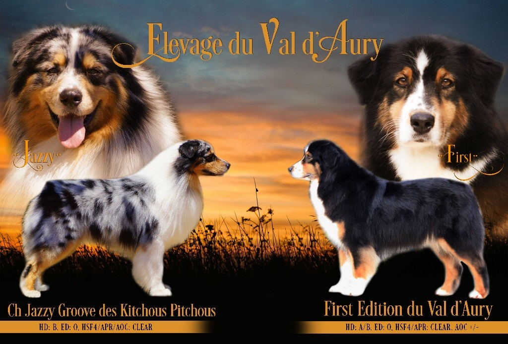 du Val d'Aury - Portée prévue fin mars !