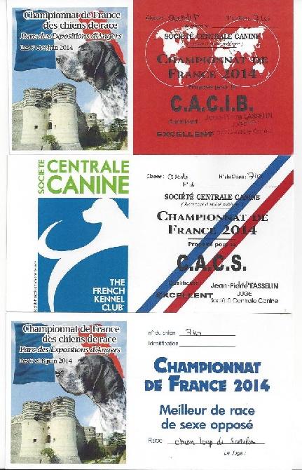 de la mollyniere de lo'scale - Championne de France 2014