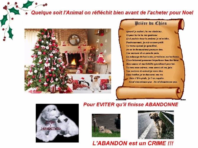 Du Domaine De La Sarronnaise - NON à l'ABANDON !!!!