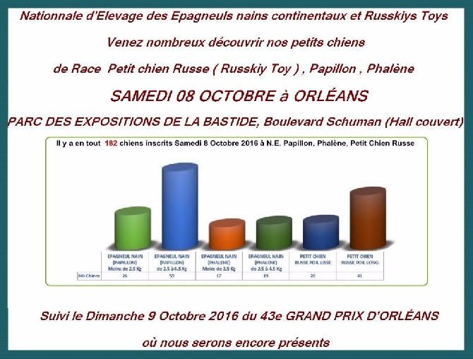 Du Domaine De La Sarronnaise - VENEZ NOMBREUX