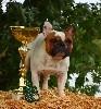 - Jackie est CHAMPION de Belgique