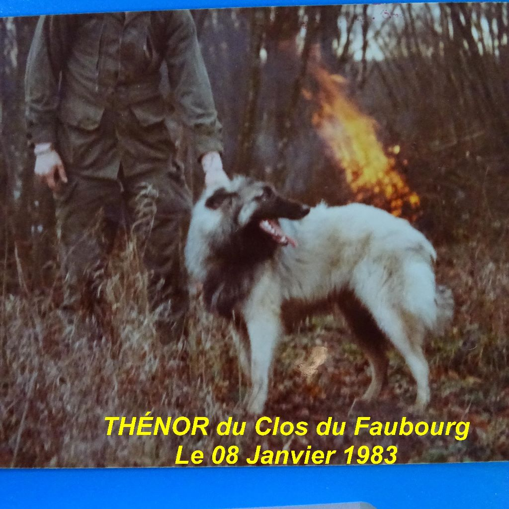 Publication : Du clos du faubourg  Auteur : Son Maître