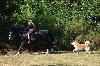 - Visite de l'élevage sur rdv