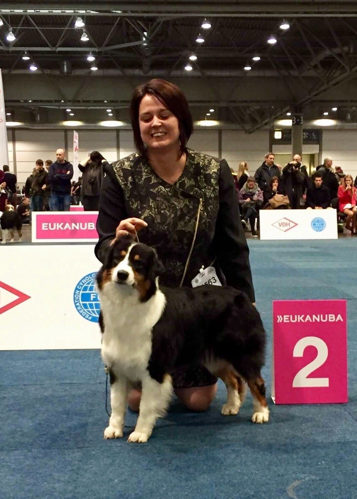 Du Petit Mont D'éden - World Dog Show Leipzig 2017