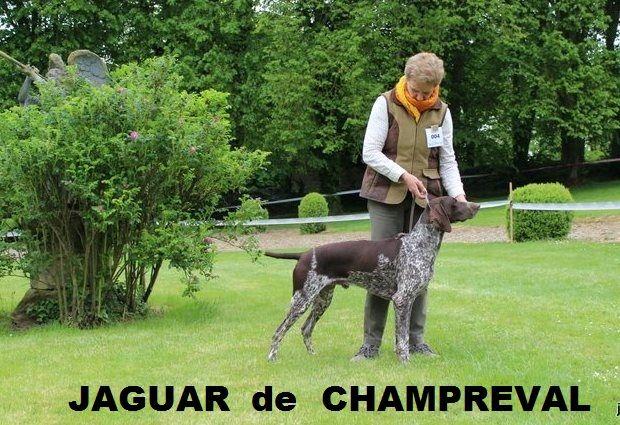 de Champreval - NATIONALE D'ELEVAGE 2016