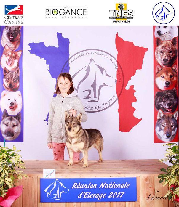 Des coeurs d'alène - Nationale d'élevage 2017 à Montluçon