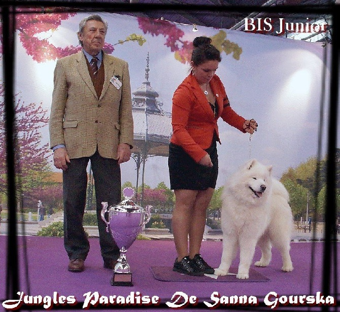 Of Antartic Angels - Valence National Dog Show 2016