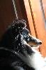 - Itia n 'aime pas le froid