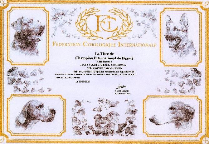 Des Rives Du Djoliba - Charlie Champion