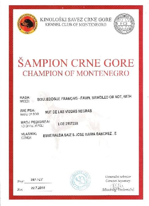 De Cans D'aragon - nouveaux Championnes Montenegro