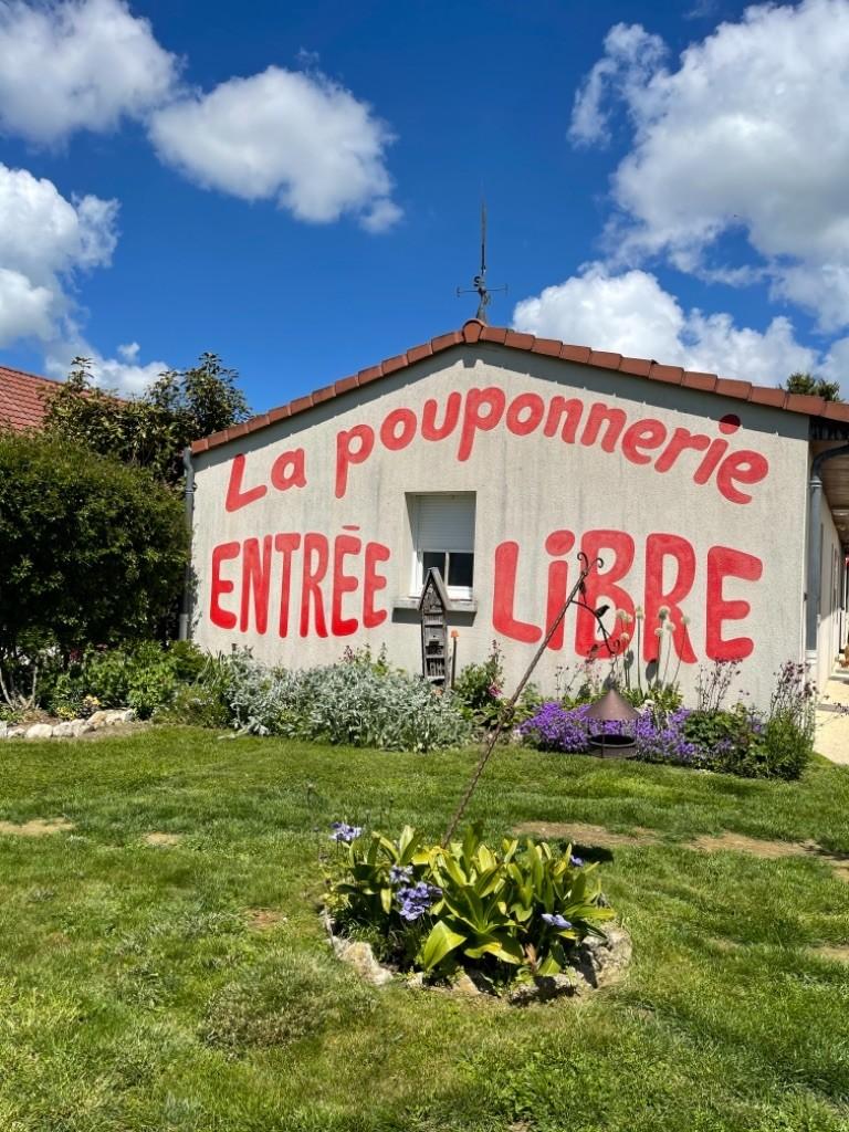 La Pouponnerie, Elevage Du Pre Moussey - Chiot disponible  - Beagle
