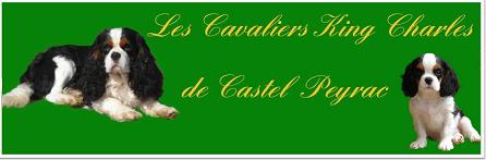 Elevage de Castel Peyrac