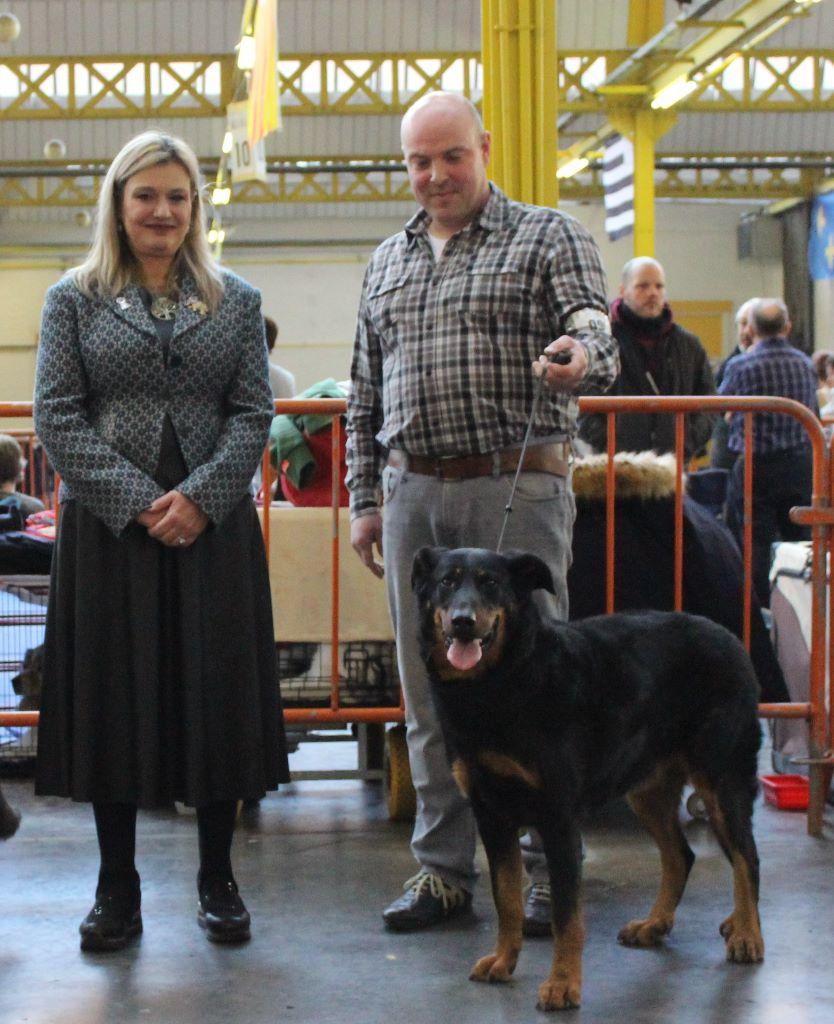 L'ami De La Campagne - Expo canine Mouscron