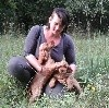 - Fete de la chasse