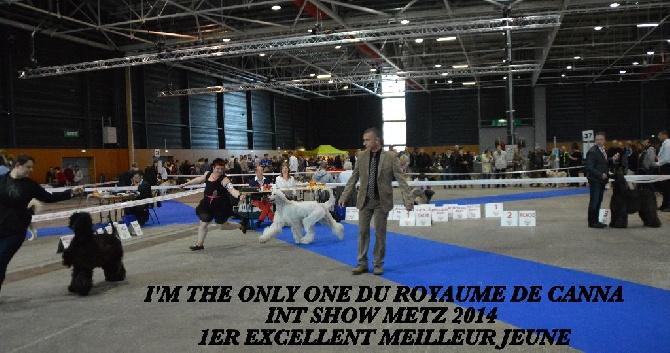 Du Royaume De Canna - INT SHOW METZ 2014