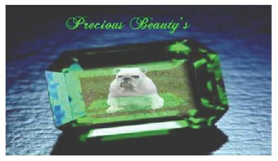 Precious Beauty's