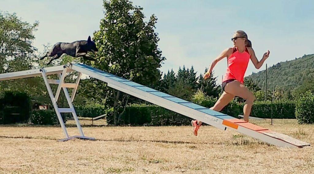 Du Rocher Des Ducs - CAESC et Pass Agility en poche pour Fly !