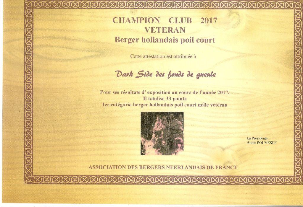 Du Rocher Des Ducs - Dark Side Champion Club Vétéran