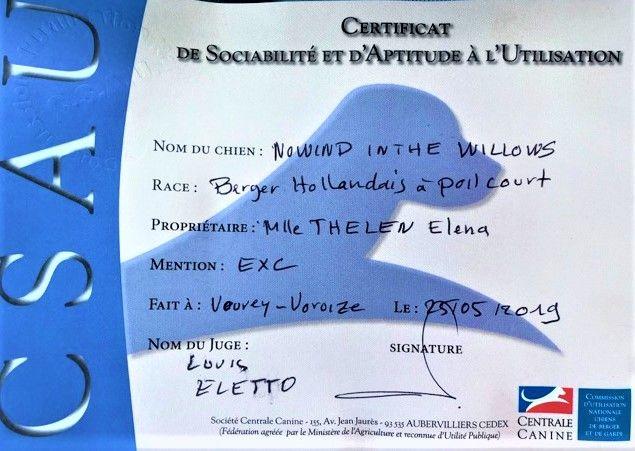 Du Rocher Des Ducs - CSAU en poche pour Willow !