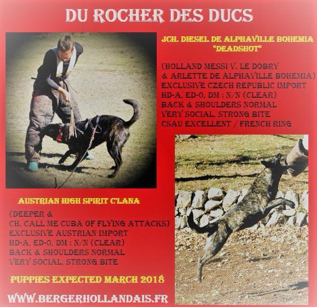 Du Rocher Des Ducs - Mariage exclusif en France !!