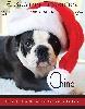 - Chino en vedette dans un magazine américain !