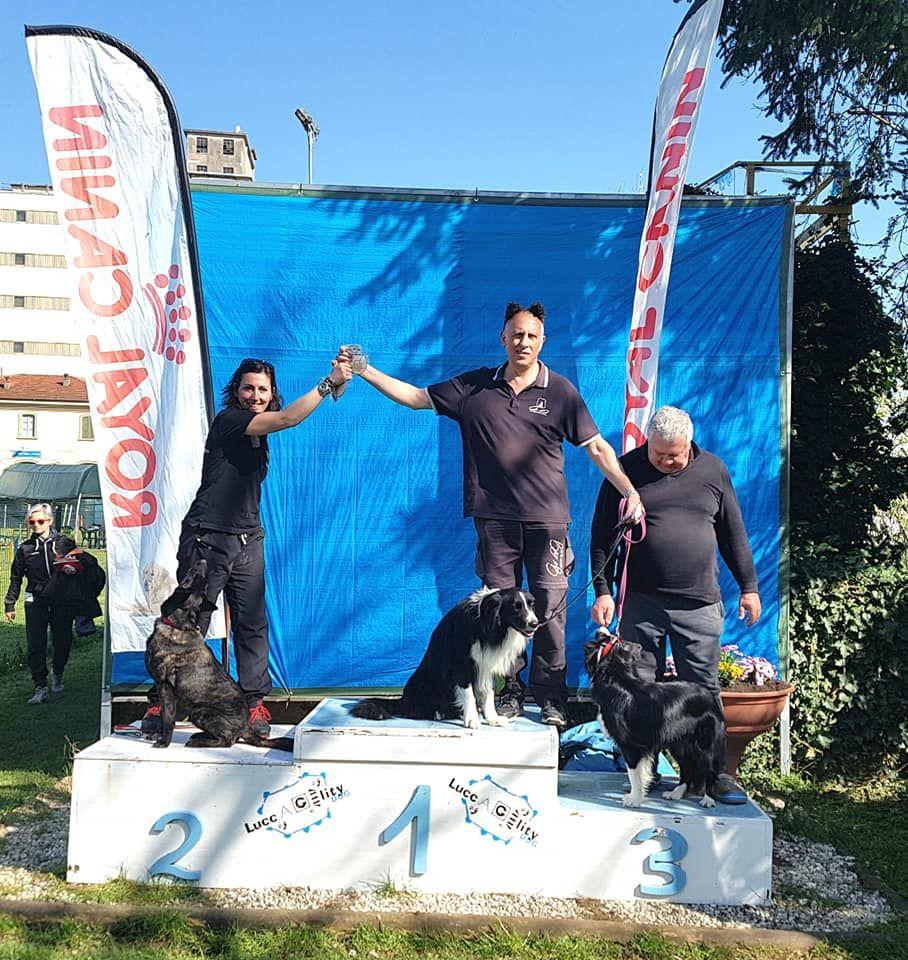 Du Rocher Des Ducs - Encore un podium en Agility 3 pour Maori !